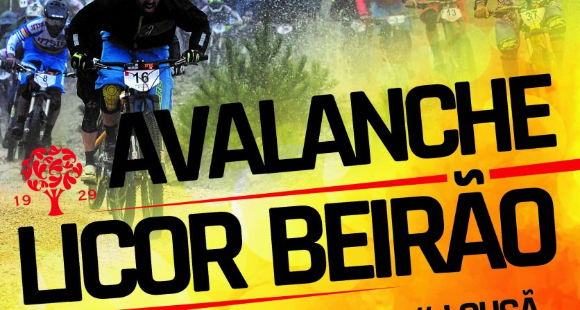Avalanche - BTT / Downhill