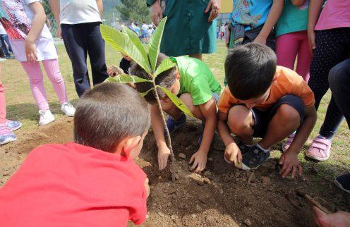 9 Escolas da Lousã conseguem a Bandeira Verde Eco-Escolas.