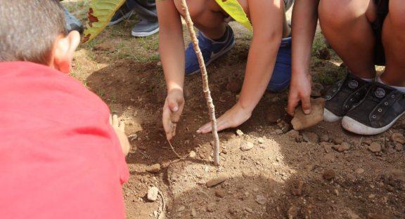9 Escolas da Lousã conseguem a Bandeira Verde Eco-Escolas em 2021.