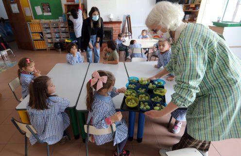 Câmara Municipal reforça apoios no âmbito da ação social escolar.